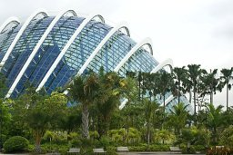 Singaporean Cloud Forest