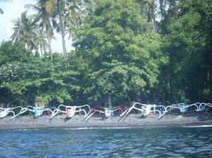 Boats along the shore