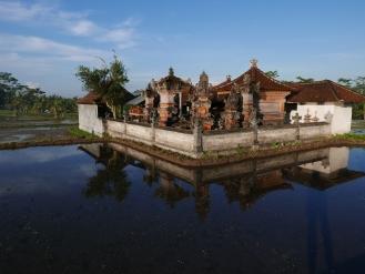 Hindu, Temple, Bali, Ubud, Indonesia, Rice Paddy