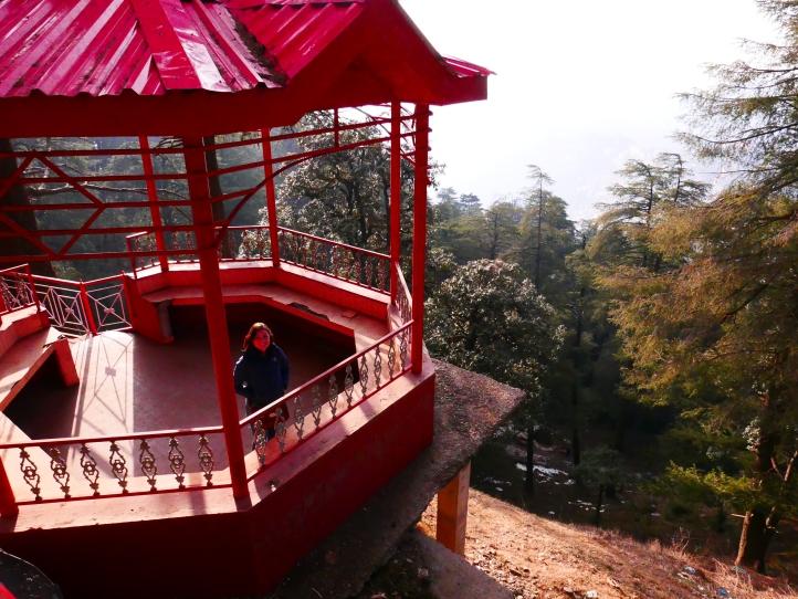 Jakhu Temple, Shimla, India, Monkeys